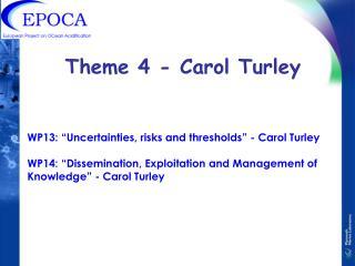 Theme 4 - Carol Turley