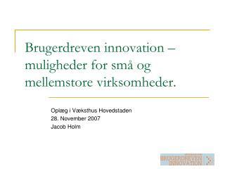 Brugerdreven innovation – muligheder for små og mellemstore virksomheder.