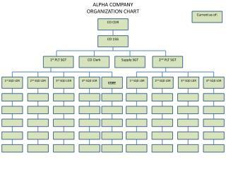 ALPHA  COMPANY ORGANIZATION CHART