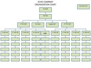 ECHO  COMPANY ORGANIZATION CHART