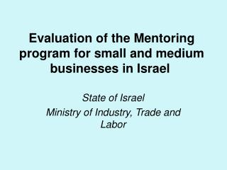 Evaluation of the Mentoring program for small and medium businesses in Israel