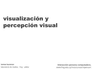 visualización y percepción visual