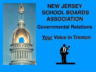 Your  Voice in Trenton