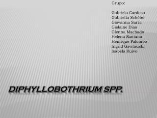 Diphyllobothrium spp .