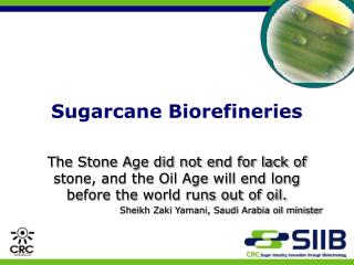 Sugarcane Biorefineries