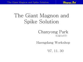 The Giant Magnon and Spike Solution