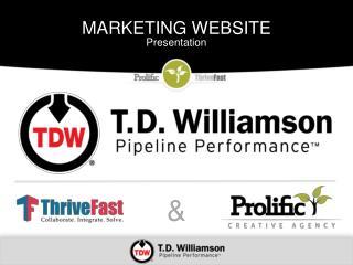 MARKETING WEBSITE Presentation