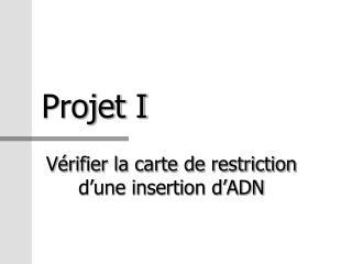 Projet I