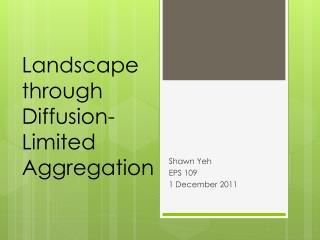 Landscape through Diffusion- Limited Aggregation