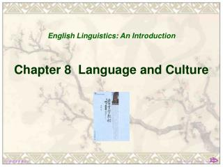 Chapter 8  Language and Culture