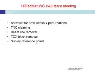 HiRadMat WG 2&3 team meeting