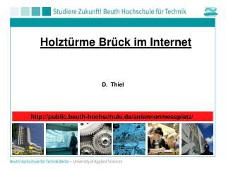 Holztürme  Brück im Internet