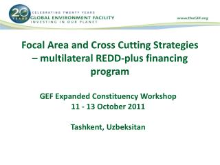 Focal Area and Cross Cutting Strategies – multilateral REDD-plus financing program