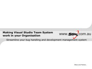 Making Visual Studio Team System work in your Organisation
