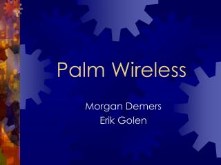Palm Wireless
