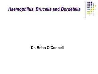 Haemophilus ,  Brucella  and  Bordetella