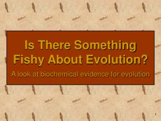 Is There Something Fishy About Evolution? A look at biochemical evidence for evolution