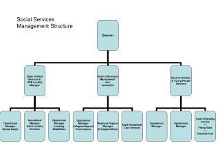 Social Services Management Structure