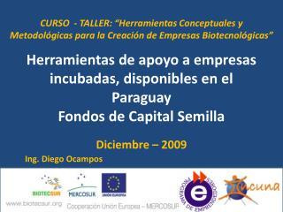 Herramientas de apoyo a empresas incubadas, disponibles en el  Paraguay Fondos  de Capital Semilla