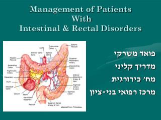 Management of Patients  With Intestinal & Rectal Disorders