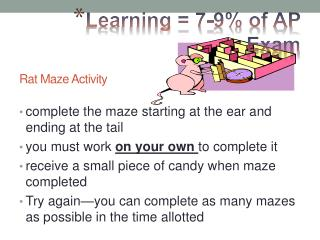 Rat Maze Activity