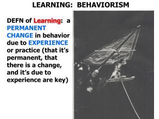 LEARNING:  BEHAVIORISM