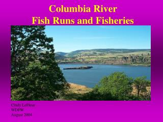 Columbia River  Fish Runs and Fisheries