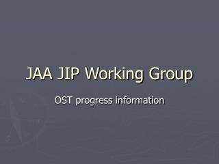 JAA JIP Working Group