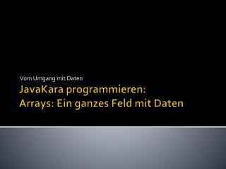JavaKara programmieren: Arrays: Ein ganzes Feld mit Daten