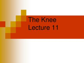 The Knee Lecture 11