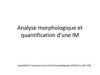 Analyse morphologique et quantification d ' une IM