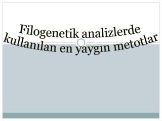 Filogenetik  analizlerde  kullanılan en yaygın metotlar