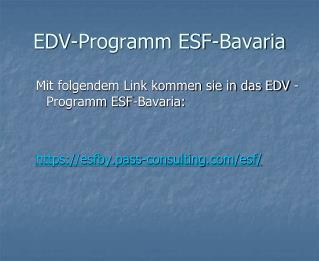 EDV-Programm ESF-Bavaria