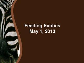 Feeding Exotics May 1, 2013