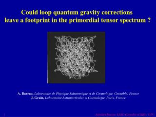 Could loop quantum gravity corrections  leave a footprint in the primordial tensor spectrum ?