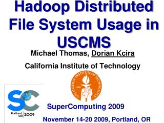 Hadoop Distributed File System Usage in USCMS