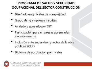PROGRAMA DE SALUD Y SEGURIDAD OCUPACIONAL DEL SECTOR CONSTRUCCIÓN