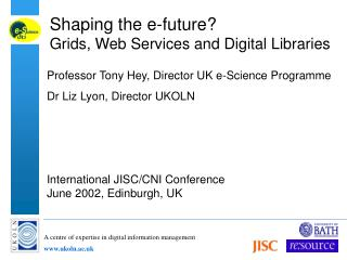 Shaping the e-future? Grids, Web Services and Digital Libraries
