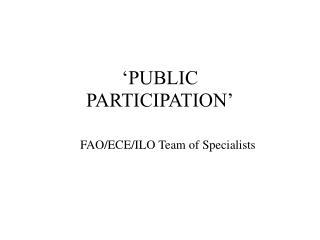�PUBLIC PARTICIPATION�
