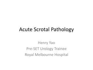 Acute Scrotal Pathology