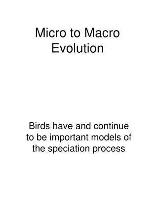 Micro to Macro Evolution