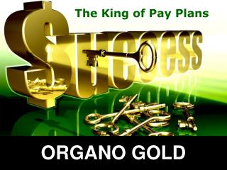 The King of Pay Plans