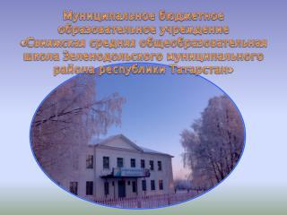 Муниципальное бюджетное  образовательное учреждение