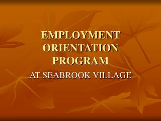 EMPLOYMENT ORIENTATION PROGRAM