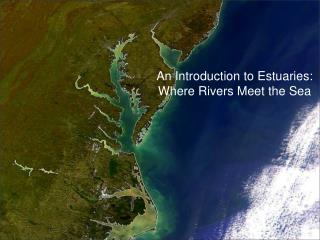 An Introduction to Estuaries