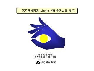 ( 주 ) 금성정공  Single PPM  추진사례 발표