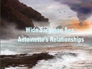 madness wide sargasso sea essay