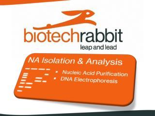 Che cosa offre  biotech rabbit ?