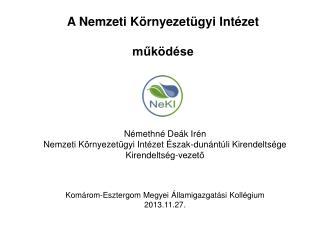 A Nemzeti Környezetügyi Intézet működése