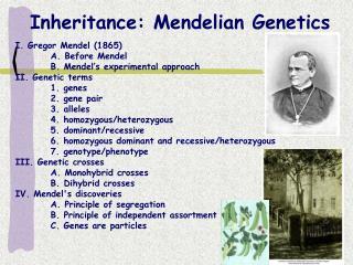Inheritance: Mendelian Genetics
